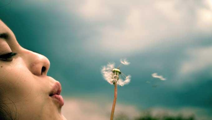 Mujer soplando al viento la pelusa de una flor simbolizando las consultas de registros akáshicos en el universo